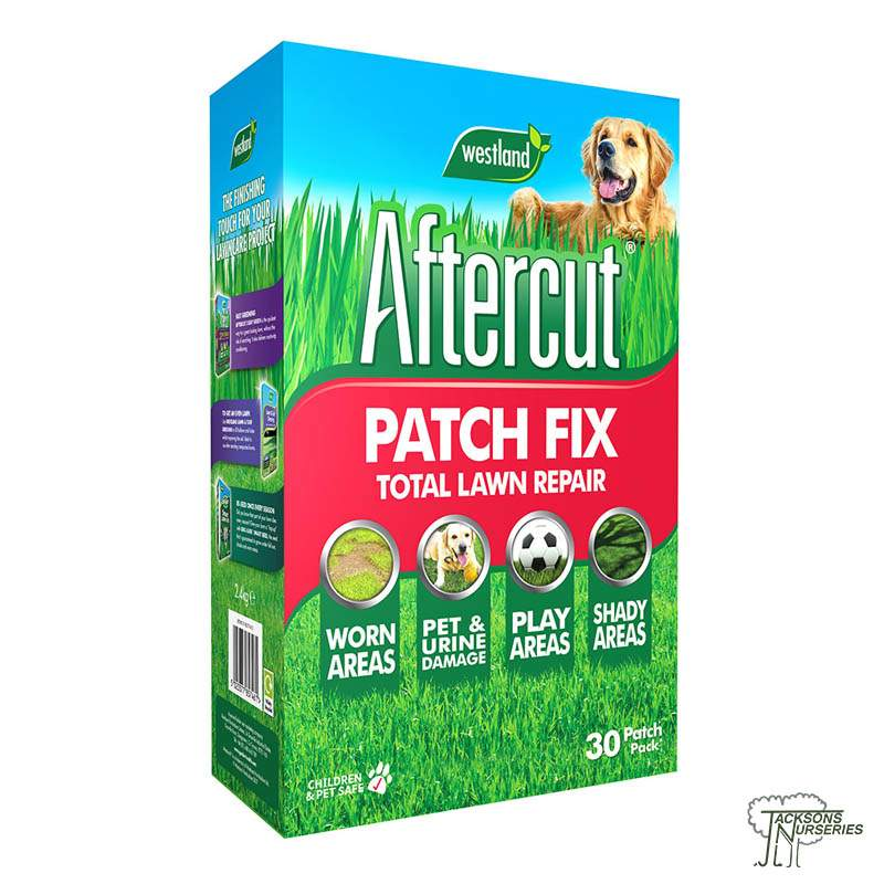 patch grass urine