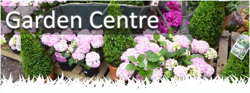 Our garden centre is based in staffordshire