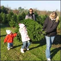 Family carrying Christmas tree home