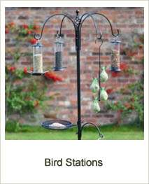 Buy Bird Stations online at Jacksons Nurseries