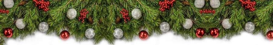 Christmas Tree Care Advice top banner