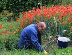 February Gardening Jobs