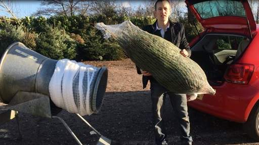 Putting Christmas Tree in Car