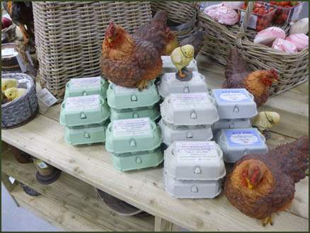 Free range Hen and Duck eggs available at Jacksons Nurseries Farm Shop
