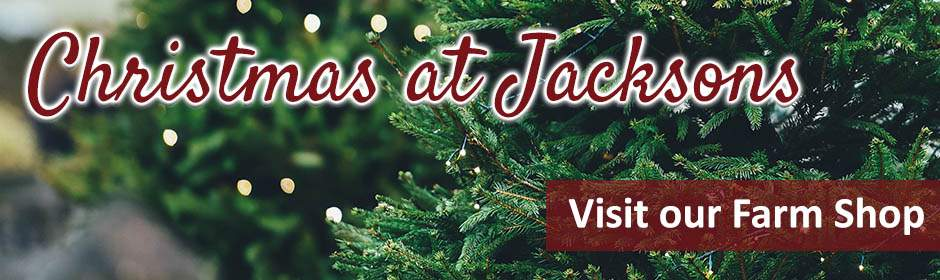 Christmas at Jacksons Nurseries Farm Shop in Bagnall, Staffordshire