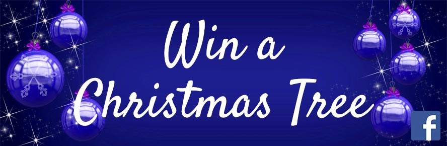 Win a Real Christmas Tree from Jacksons Nurseries