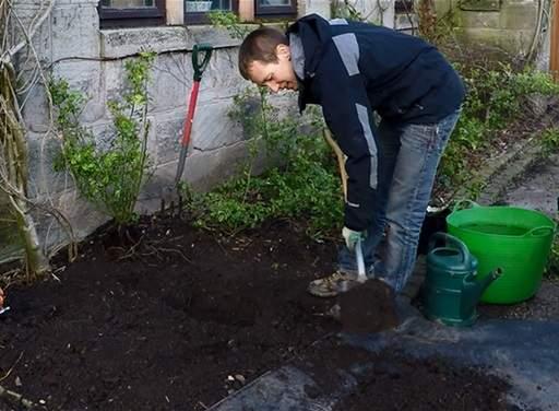 Getting a soil sample
