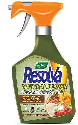 Spray grzybobójczy