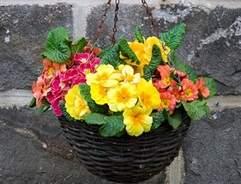 Hanging basket tips