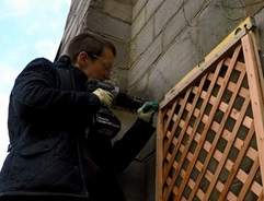 How to install a trellis