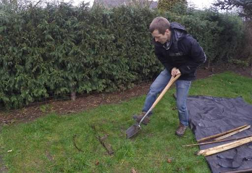 Removing turf for planting hole