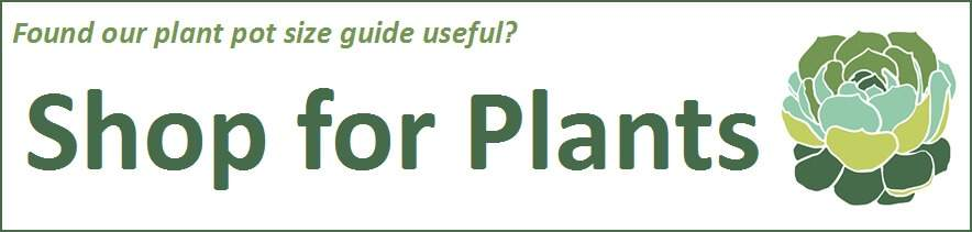 Shop for Plants banner to plant pot size guide