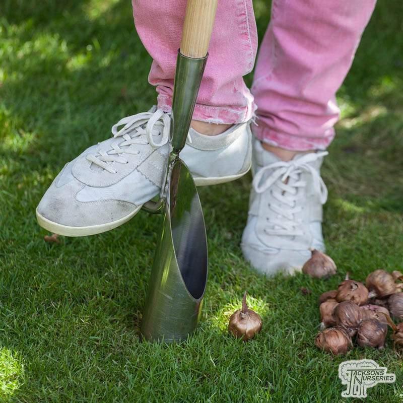 Buy Burgon Amp Ball Long Handled Bulb Planter Online
