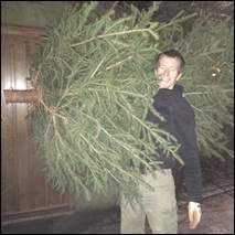 Reasons to buy a Christmas tree early