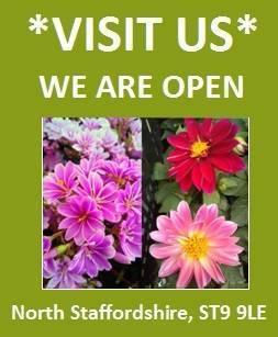 Visit Us Homepage banner