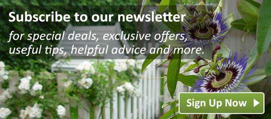 Subscribe to our newsletter for special deals, exclusive offers, useful tips, helpful advice and more.