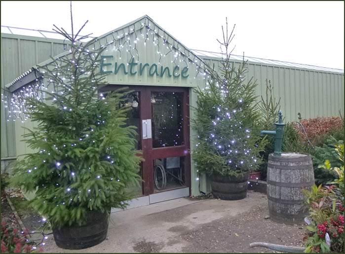 Garden centre Christmas entrance