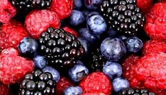 Shop all fruit bushes