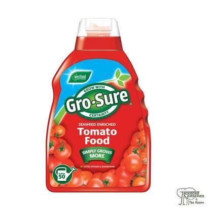 Buy Westland Gro-Sure - Tomato Plant Food online from Jacksons Nurseries.
