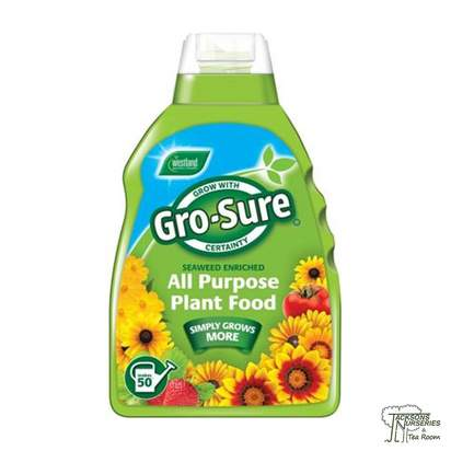 Buy Westland Gro-Sure - All Purpose Plant Food online from Jackson's Nurseries.