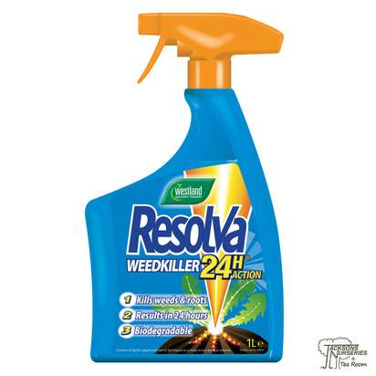Buy Westland Resolva - 24H Ready to Use (RTU) online from Jackson's Nurseries.