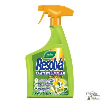 Buy Westland Resolva Lawn Weedkiller Extra online from Jackson's Nurseries.