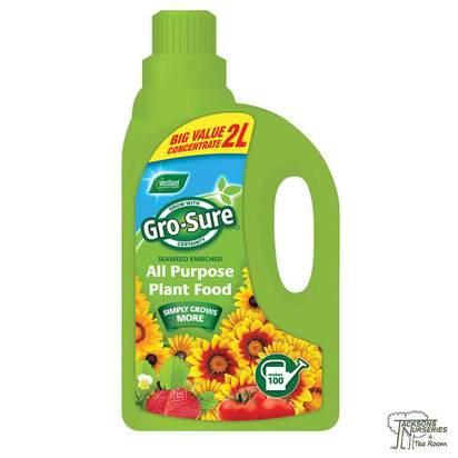 Buy Westland Gro-Sure - All Purpose Plant Food online from Jackson's Nurseries.