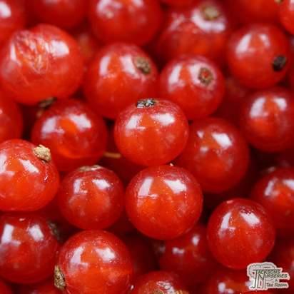 Buy Redcurrant - Ribes rubrum 'Red Lake' online from Jacksons Nurseries