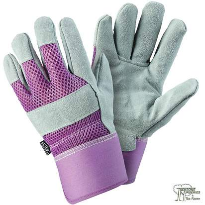Buy Ladies Rigger Lavender Gloves Online