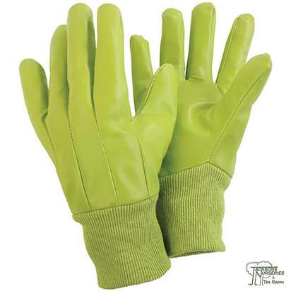 Buy Briers Water Resistant Lime Gloves Online