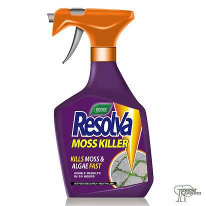 Buy Westland Resolva Moss Killer online from Jackson's Nurseries.