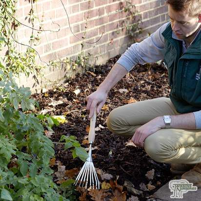 Burgon & Ball Mid Handled Shrub Rake